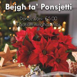 2020-11-27 - Bejgħ ta' Ponsjetti għal żmien il-Milied