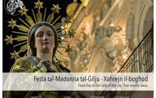 Two months away from the Feast Day of Our Lady of the Lily in Mqabba