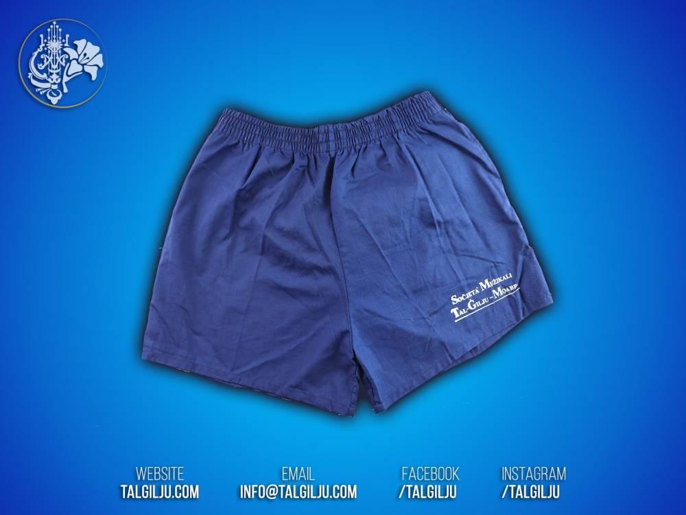 Festa Blue Shorts